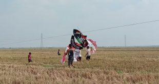 Sambut HUT Kemerdekaan RI dengan Festival Layangan