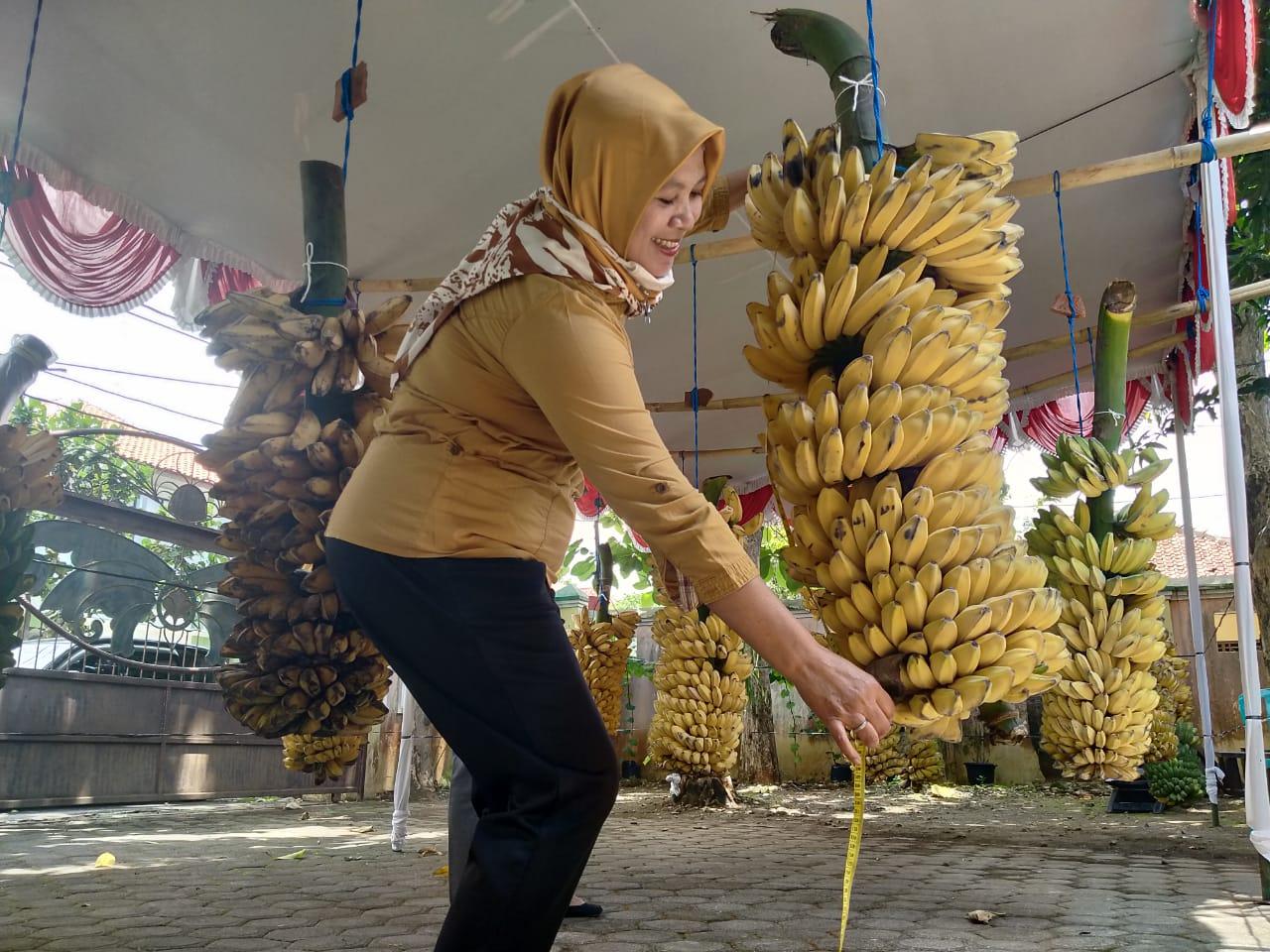 Lomba pisang Jepara