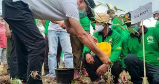 Tanam Seribu Pohon, Masyarakat Diajak Menjaga Ketersediaan Air