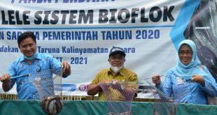 Balai Besar Perikanan Sukses Ajari Masyarakat Budidaya Lele Bersistem Bioflok